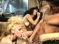 Horny friends get together for an orgy